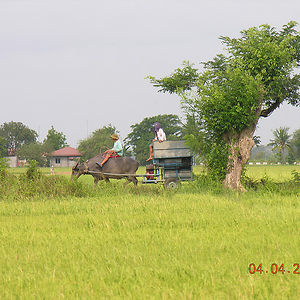 Profile picture for Poblacion Jaen
