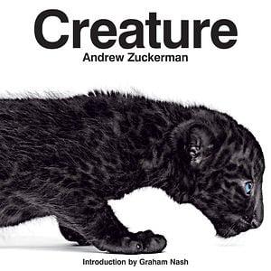 Profile picture for Andrew Zuckerman Studio