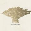 Banyan Tree Productions