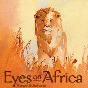 Profile picture for Eyes on Africa