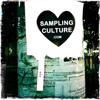 Sampling Culture
