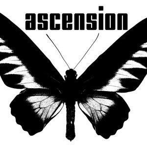 Profile picture for ascension