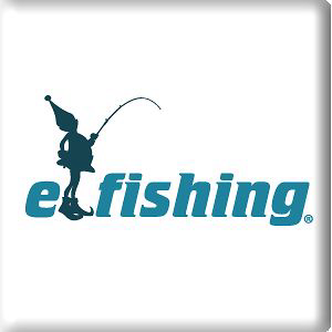 Profile picture for elfishing