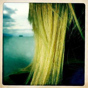 Profile picture for Lora Martin