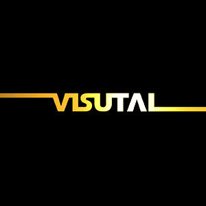 Profile picture for visutal