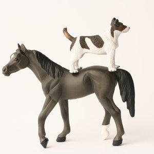 Profile picture for Dog & Pony Theatre