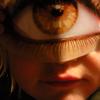 Eye Fidelity