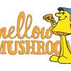 Mellow Mushroom Charleston