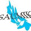 Sadman Sakib Saumik