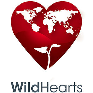 Profile picture for WildHearts