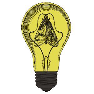 Profile picture for Mothlight Creative