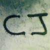 CJ Clarke