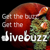 Dive Buzz