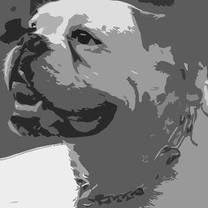 Profile picture for Super5