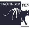 Schrödinger Films