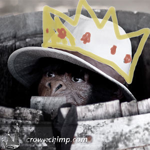 Profile picture for Crown Chimp Productions