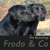 Nel Barendregt - Frodo & Co