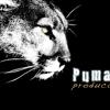 Pumahue Producciones
