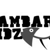 Lambari Vidz
