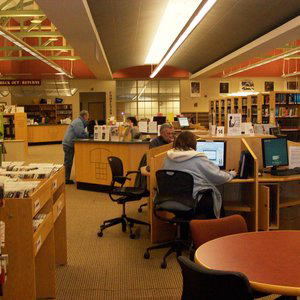 Profile picture for protectnylibraries
