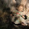 arash fesharaki