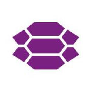 Profile picture for The Purple Turtle