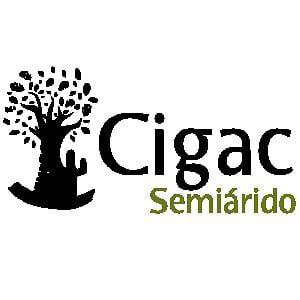 Profile picture for Cigac