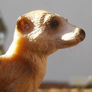 Profile picture for Joris van Beusekom