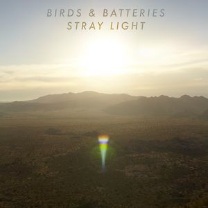 Profile picture for Birds & Batteries