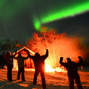 Profile picture for Lights Over Lapland