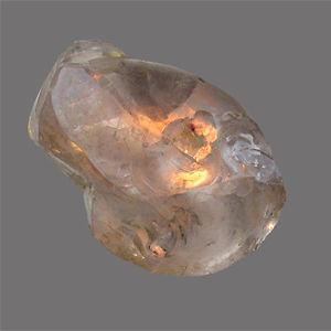 Profile picture for lucille dautriche