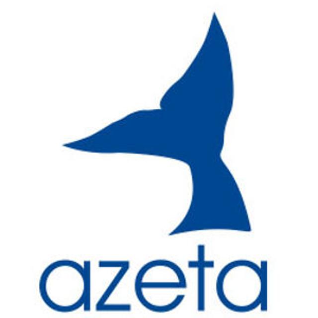 Image result for AZETA – INCOMING ARGENTINA by AZETA VIAGGI