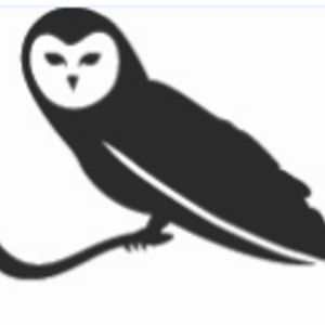 Profile picture for Leading Owls
