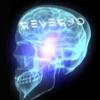 REVERSO SKATEBOARDS