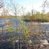 Penobscot River Trust