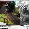 Skate Incognito