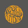 Lost Moon Radio