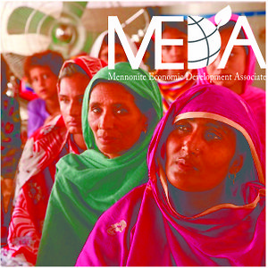 Profile picture for MEDA Pakistan