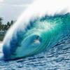 Maui Nokaoi