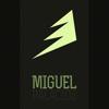 Miguel Palacios