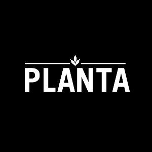 Profile picture for PLANTA