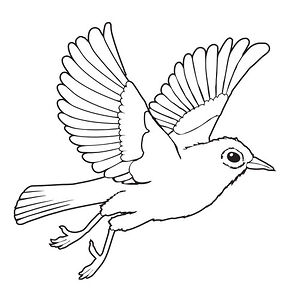 Profile picture for Waxeye