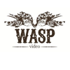 Wasp Video