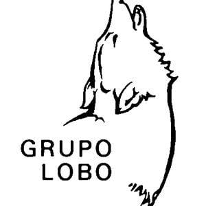 Profile picture for Grupo Lobo