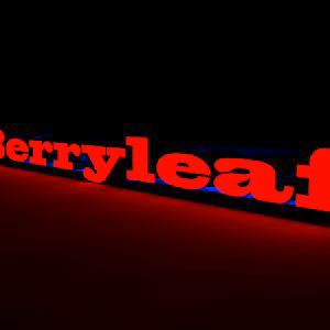 Profile picture for IBerryleaf