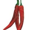 Spice Technologies