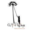 Cut the Papaya