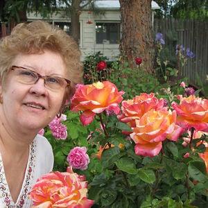 Profile picture for MÁRCIA BERGAMO DA SILVA