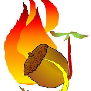 Profile picture for Oak Woodlands & Forests Fire C..