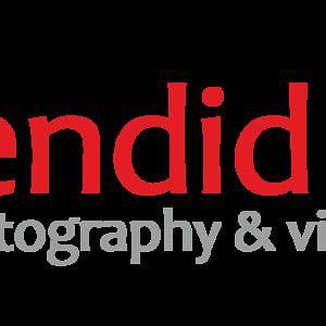 Profile picture for splendid studio